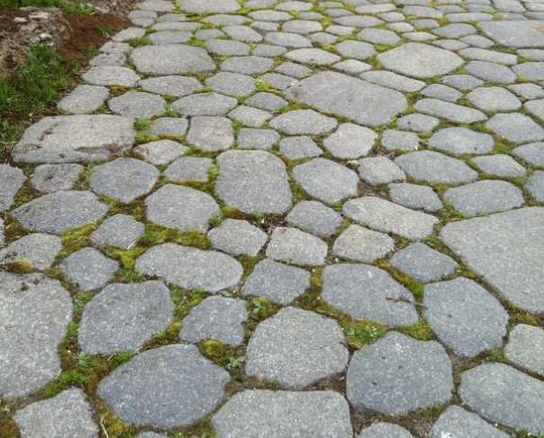 Green paving stone - Ecological pavers in wetmount