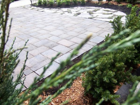 paving stone driveway with terrace and plants - Natural stone, interlock and shrubs