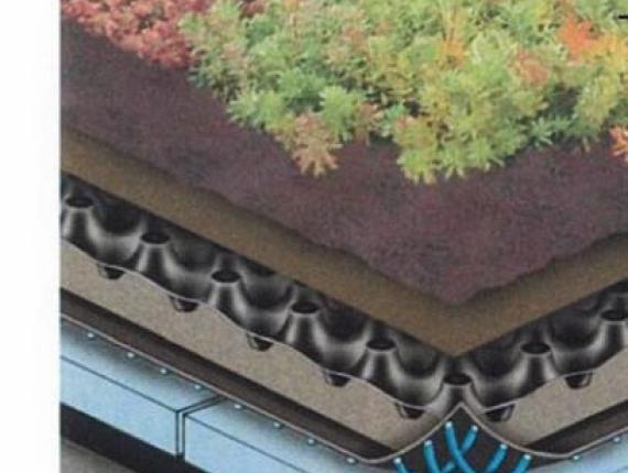 coupe toit vert - coupe toit vert