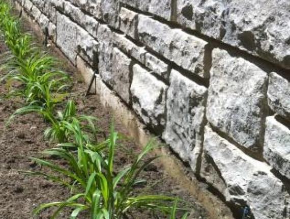 Murs le paysagiste montr al - Lessive saint marc mur ...